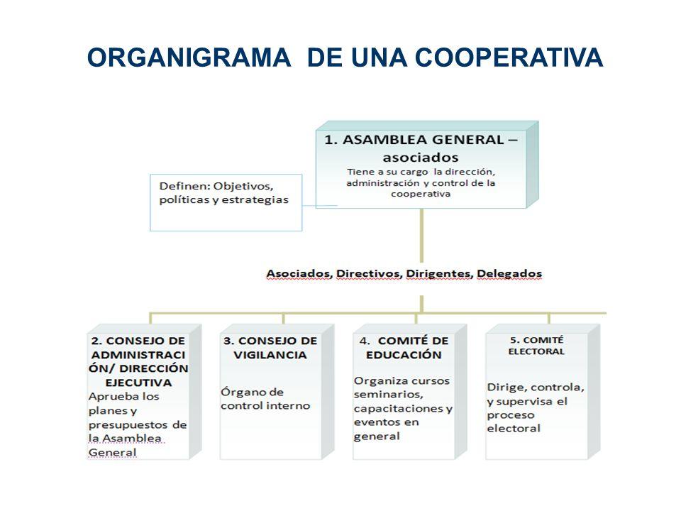 ORGANIGRAMA DE UNA COOPERATIVA