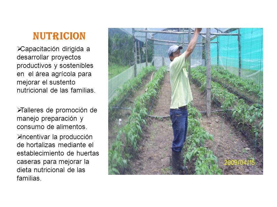 NUTRICION Capacitación dirigida a desarrollar proyectos productivos y sostenibles en el área agrícola para mejorar el sustento nutricional de las familias.
