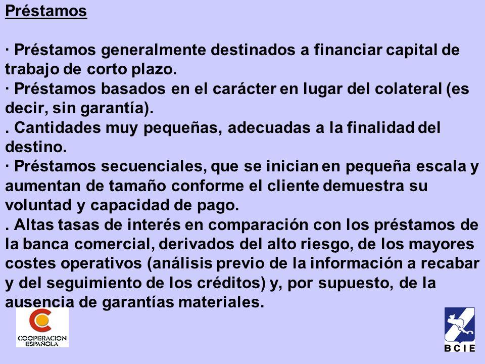 Préstamos · Préstamos generalmente destinados a financiar capital de trabajo de corto plazo.