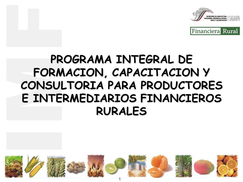 1 PROGRAMA INTEGRAL DE FORMACION, CAPACITACION Y CONSULTORIA PARA PRODUCTORES E INTERMEDIARIOS FINANCIEROS RURALES