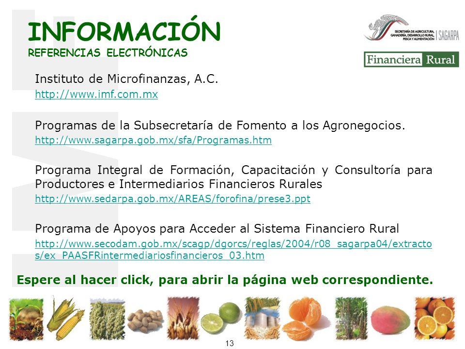 13 Instituto de Microfinanzas, A.C.