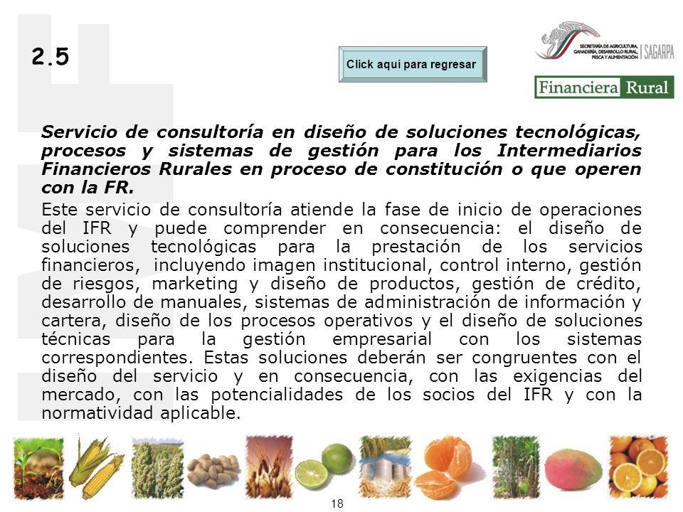 18 2.5 Servicio de consultoría en diseño de soluciones tecnológicas, procesos y sistemas de gestión para los Intermediarios Financieros Rurales en proceso de constitución o que operen con la FR.