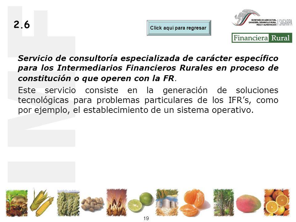 19 2.6 Servicio de consultoría especializada de carácter específico para los Intermediarios Financieros Rurales en proceso de constitución o que operen con la FR.