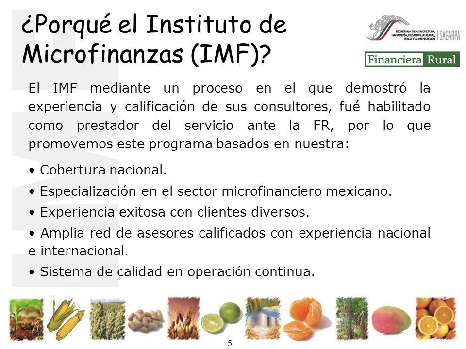 5 ¿Porqué el Instituto de Microfinanzas (IMF).