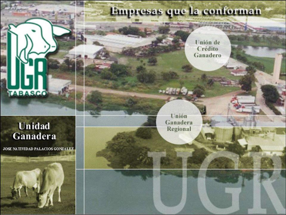 BUSCAMOS GENERAR Esquemas enfocados a fomentar la productividad Desarrollo de Proveedores de la Agroindustria.