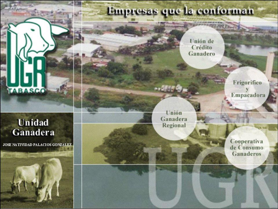PROGRAMA DE APARCERIA Aparcería.