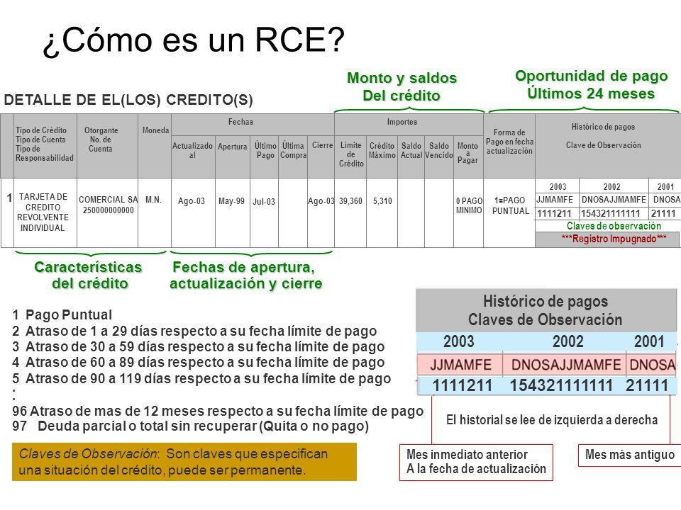 ¿Cómo es un RCE? Tipo de Crédito Tipo de Cuenta Tipo de Responsabilidad Otorgante No. de Cuenta Moneda Actualizado al Último Pago Última Compra Cierre