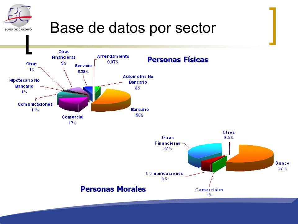 Base de datos por sector Personas Físicas Personas Morales