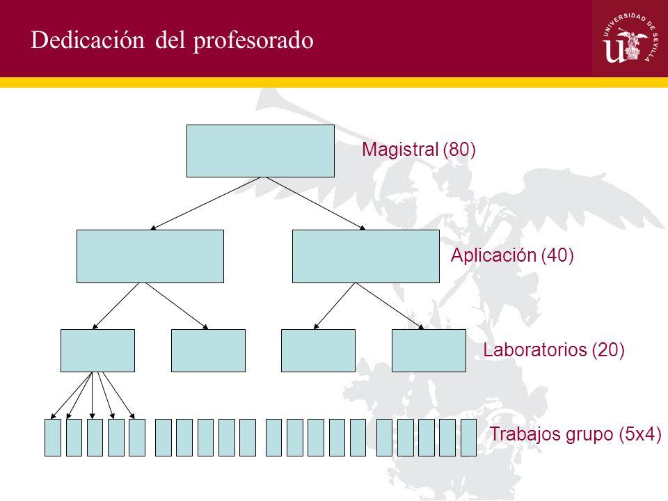 Dedicación del profesorado Magistral (80) Aplicación (40) Laboratorios (20) Trabajos grupo (5x4)