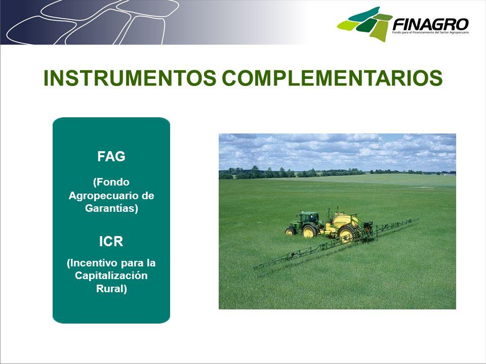 INSTRUMENTOS COMPLEMENTARIOS ICR (Incentivo para la Capitalización Rural) FAG (Fondo Agropecuario de Garantías)