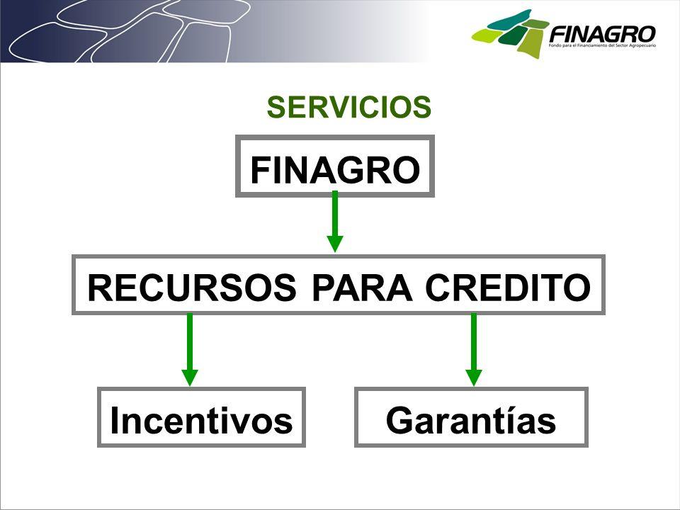 SERVICIOS FINAGRO Incentivos RECURSOS PARA CREDITO Garantías