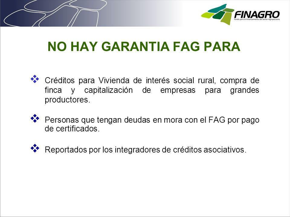 NO HAY GARANTIA FAG PARA Créditos para Vivienda de interés social rural, compra de finca y capitalización de empresas para grandes productores. Person