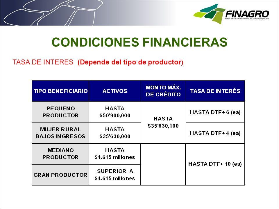 CAPITAL DE TRABAJO PRODUCCIÓN AGRÍCOLA SOSTENIMIENTO TRANSFORMACIÓN PRIMARIA Y COMERCIALIZACIÓN SERVICIOS DE APOYO OTRAS ACTIVIDADES RURALES INVERSIÓNNORMALIZACIÓN CARTERA PLANTACIÓN, MANTEN.