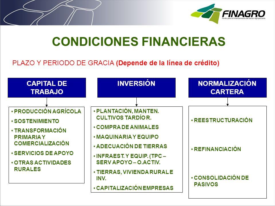 CAPITAL DE TRABAJO PRODUCCIÓN AGRÍCOLA SOSTENIMIENTO TRANSFORMACIÓN PRIMARIA Y COMERCIALIZACIÓN SERVICIOS DE APOYO OTRAS ACTIVIDADES RURALES INVERSIÓN