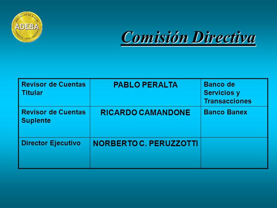 Comisión Directiva Revisor de Cuentas Titular PABLO PERALTA Banco de Servicios y Transacciones Revisor de Cuentas Suplente RICARDO CAMANDONE Banco Banex Director Ejecutivo NORBERTO C.