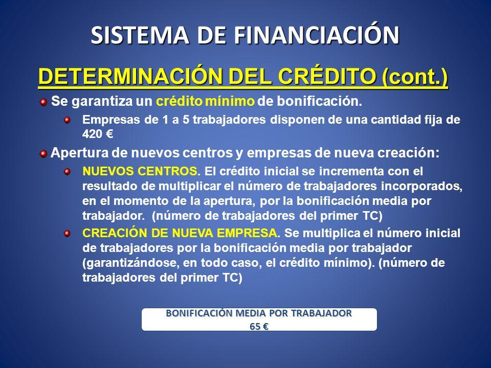 SISTEMA DE FINANCIACIÓN DETERMINACIÓN DEL CRÉDITO (cont.) Se garantiza un crédito mínimo de bonificación. Empresas de 1 a 5 trabajadores disponen de u