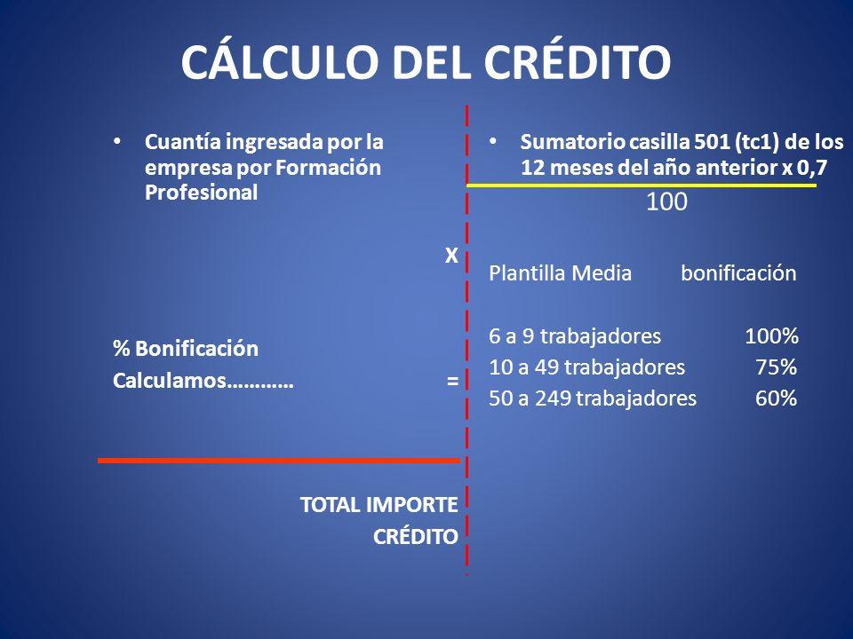 CÁLCULO DEL CRÉDITO Cuantía ingresada por la empresa por Formación Profesional X % Bonificación Calculamos………… = TOTAL IMPORTE CRÉDITO Sumatorio casil