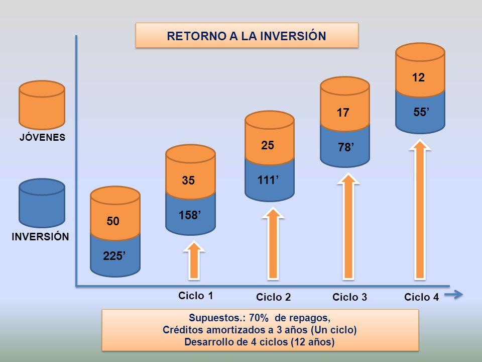 Supuestos.: 70% de repagos, Créditos amortizados a 3 años (Un ciclo) Desarrollo de 4 ciclos (12 años) Supuestos.: 70% de repagos, Créditos amortizados a 3 años (Un ciclo) Desarrollo de 4 ciclos (12 años) Ciclo 1 Ciclo 2Ciclo 3Ciclo 4 JÓVENES INVERSIÓN 50 225 35 158 25 111 17 78 12 55 RETORNO A LA INVERSIÓN