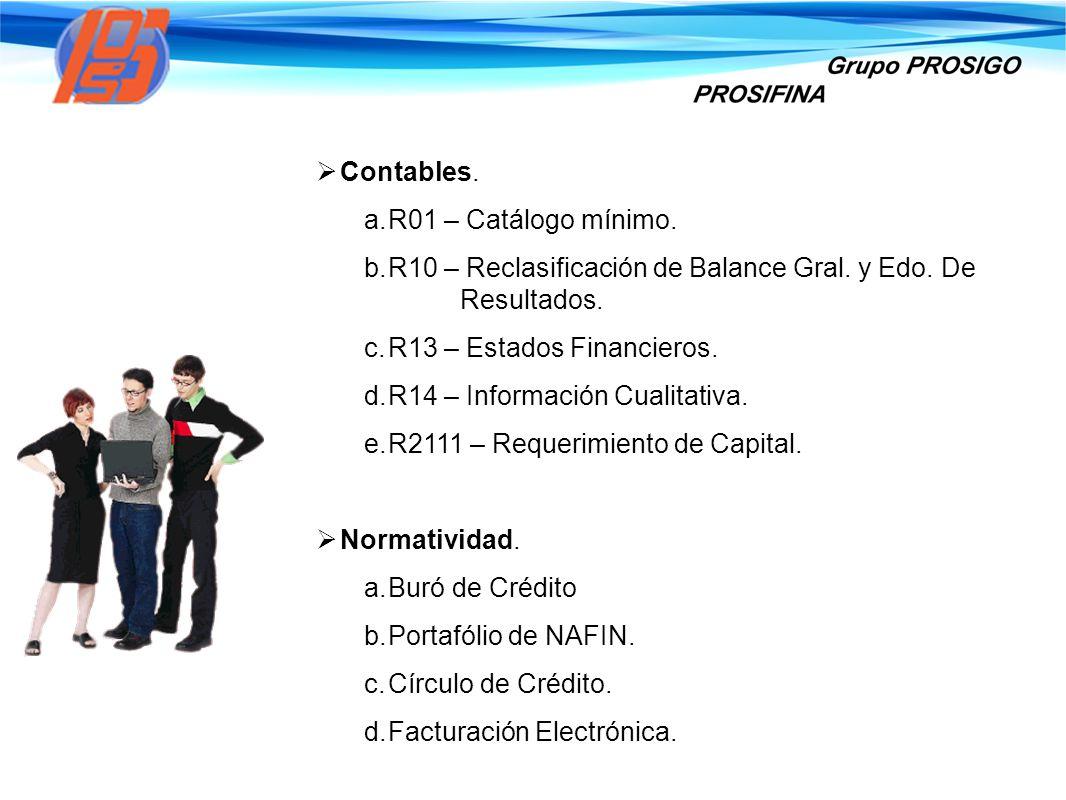 Contables. a. R01 – Catálogo mínimo. b. R10 – Reclasificación de Balance Gral. y Edo. De Resultados. c. R13 – Estados Financieros. d. R14 – Informació
