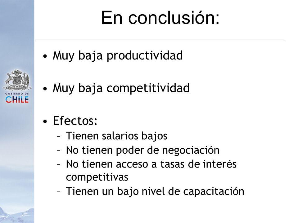 En conclusión: Muy baja productividad Muy baja competitividad Efectos: –Tienen salarios bajos –No tienen poder de negociaci ó n –No tienen acceso a tasas de inter é s competitivas –Tienen un bajo nivel de capacitaci ó n