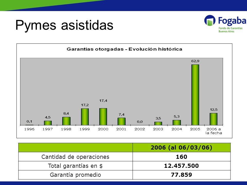 Pymes asistidas 2006 (al 06/03/06) Cantidad de operaciones160 Total garantías en $12.457.500 Garantía promedio77.859