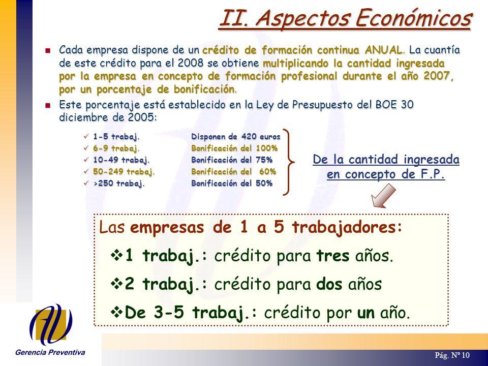 II. Aspectos Económicos Pág. Nº 10 Las empresas de 1 a 5 trabajadores: 1 trabaj.: crédito para tres años. 2 trabaj.: crédito para dos años De 3-5 trab