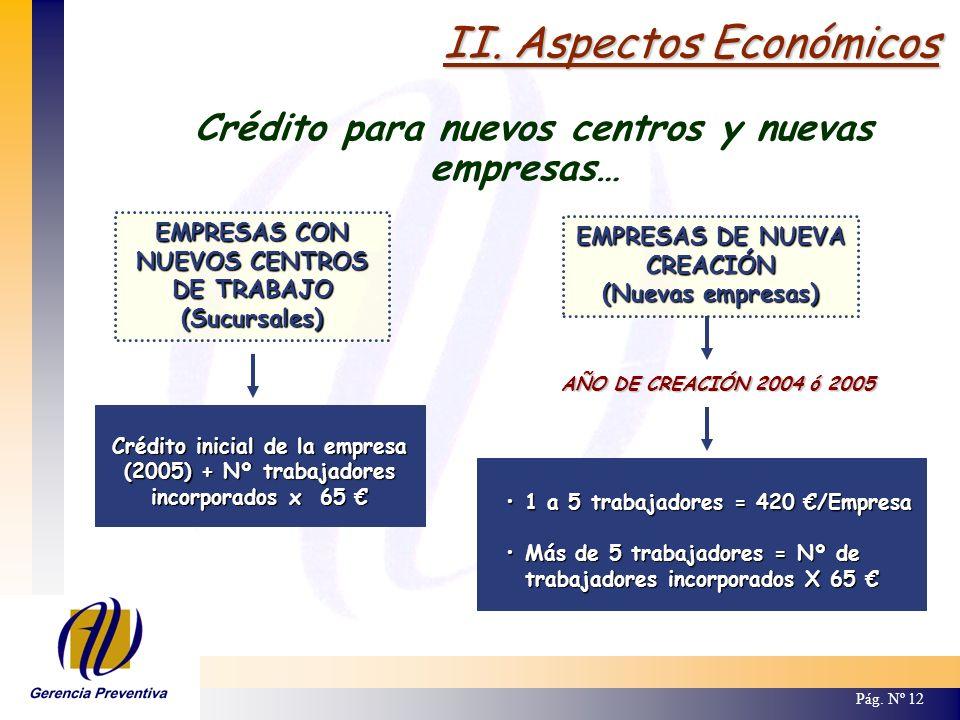 II. Aspectos Económicos Pág. Nº 12 Crédito para nuevos centros y nuevas empresas… EMPRESAS CON NUEVOS CENTROS DE TRABAJO (Sucursales) Crédito inicial