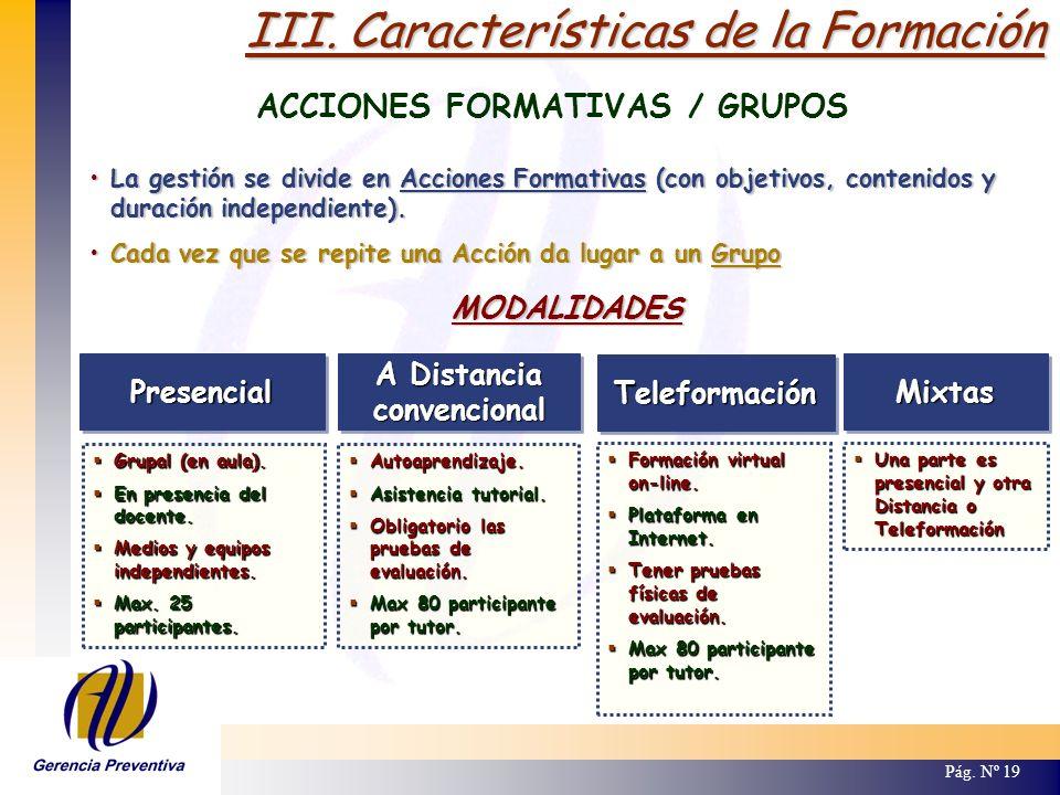 III. Características de la Formación ACCIONES FORMATIVAS / GRUPOS Pág. Nº 19 PresencialPresencial Grupal (en aula). Grupal (en aula). En presencia del