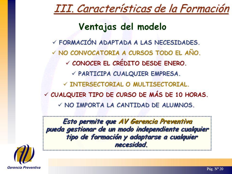 III. Características de la Formación Pág. Nº 20 Ventajas del modelo FORMACIÓN ADAPTADA A LAS NECESIDADES. FORMACIÓN ADAPTADA A LAS NECESIDADES. NO CON