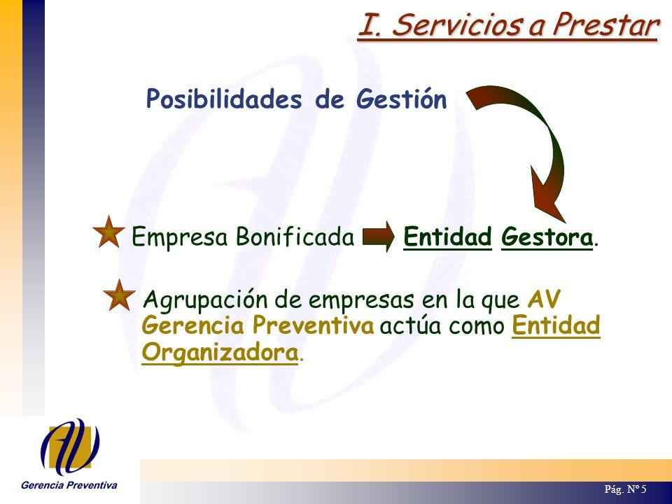 I. Servicios a Prestar Empresa Bonificada Entidad Gestora. Pág. Nº 5 Posibilidades de Gestión Agrupación de empresas en la que AV Gerencia Preventiva
