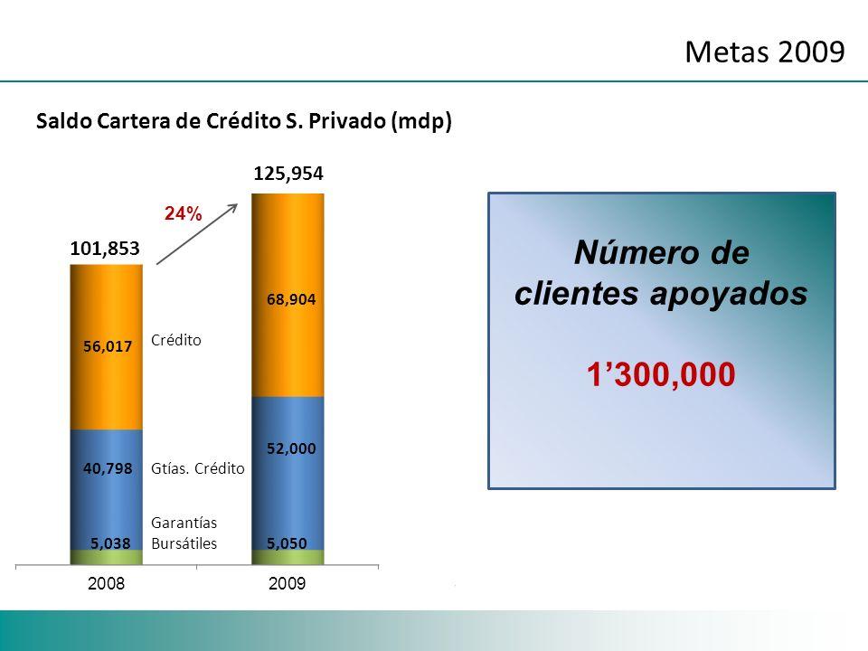 Metas 2009 24% Saldo Cartera de Crédito S. Privado (mdp) 68,904 Número de clientes apoyados 1300,000