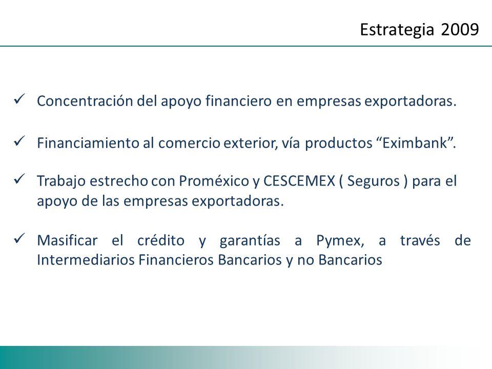 Estrategia 2009 Concentración del apoyo financiero en empresas exportadoras. Financiamiento al comercio exterior, vía productos Eximbank. Trabajo estr