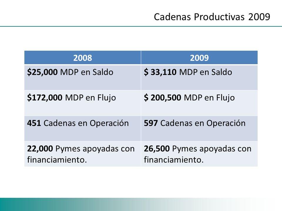 Cadenas Productivas 2009 20082009 $25,000 MDP en Saldo$ 33,110 MDP en Saldo $172,000 MDP en Flujo$ 200,500 MDP en Flujo 451 Cadenas en Operación597 Cadenas en Operación 22,000 Pymes apoyadas con financiamiento.
