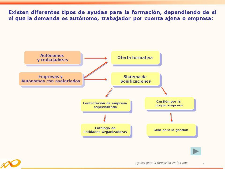 Ayudas para la formación en la Pyme2 Existen diferentes tipos de ayudas para la formación, dependiendo de si el que la demanda es autónomo, trabajador