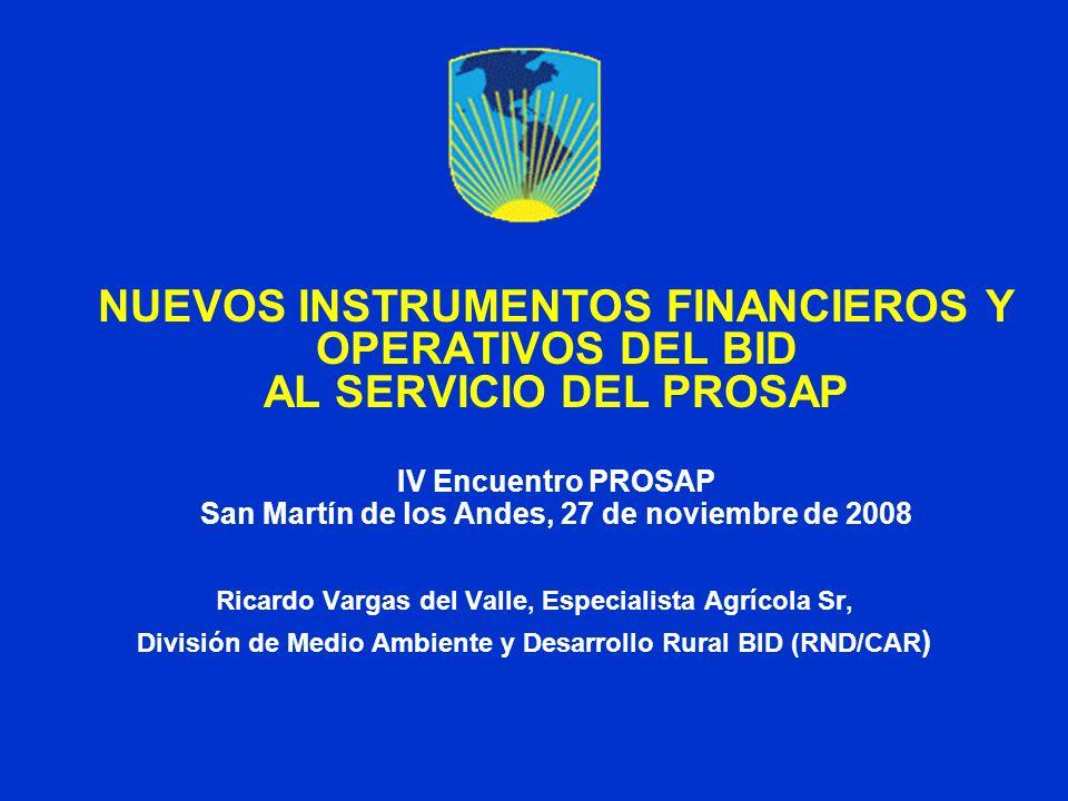 NUEVOS INSTRUMENTOS FINANCIEROS Y OPERATIVOS DEL BID AL SERVICIO DEL PROSAP IV Encuentro PROSAP San Martín de los Andes, 27 de noviembre de 2008 Ricar