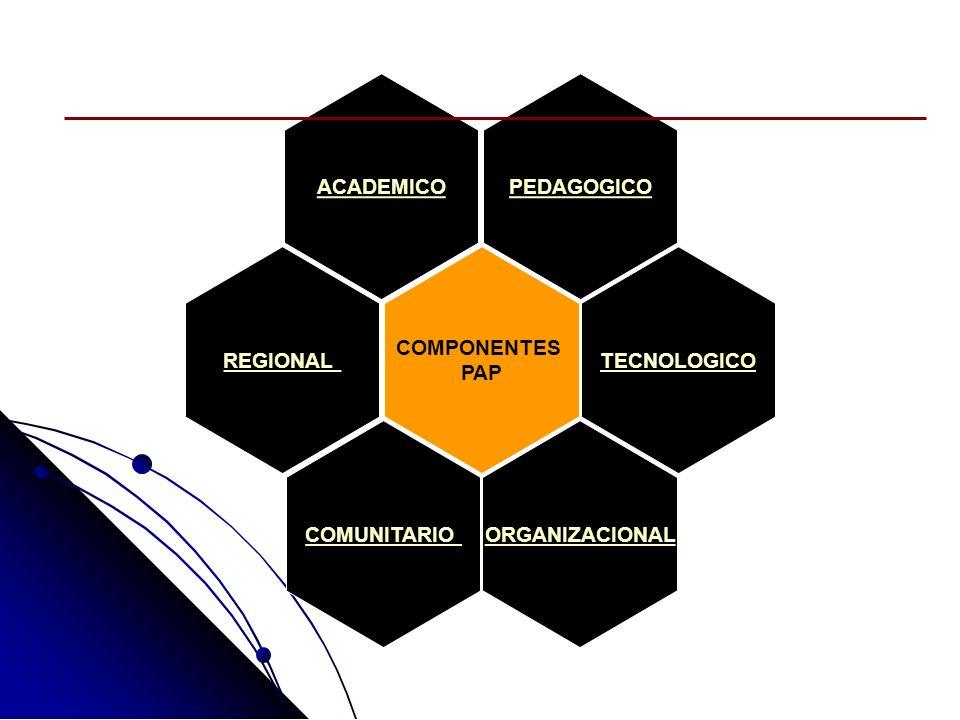 COMPONENTES PAP TECNOLOGICO ACADEMICO PEDAGOGICO REGIONAL COMUNITARIO ORGANIZACIONAL