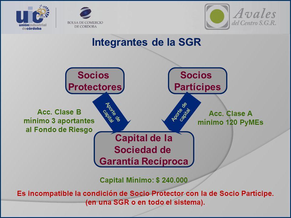 Integrantes de la SGR Socios Partícipes Socios Protectores Capital de la Sociedad de Garantía Recíproca Aporte de capital Aporte de capital Acc. Clase
