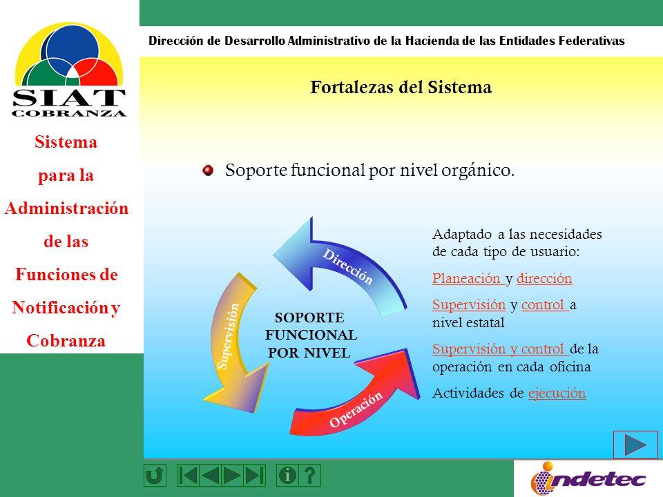 Sistema para la Administración de las Funciones de Notificación y Cobranza Dirección de Desarrollo Administrativo de la Hacienda de las Entidades Federativas Automatización del P.A.E.
