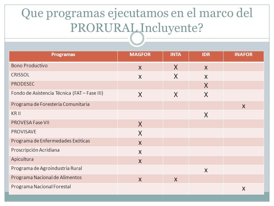 Que programas ejecutamos en el marco del PRORURAL Incluyente? ProgramasMAGFORINTAIDRINAFOR Bono Productivo xXx CRISSOL xXx PRODESEC X Fondo de Asisten