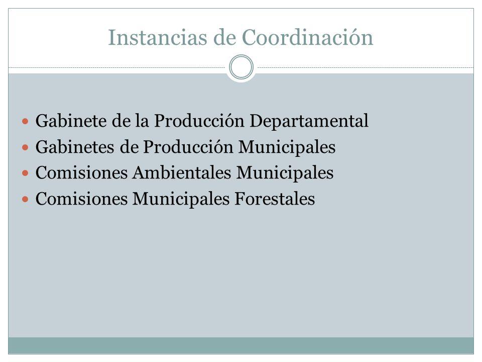 Instancias de Coordinación Gabinete de la Producción Departamental Gabinetes de Producción Municipales Comisiones Ambientales Municipales Comisiones Municipales Forestales