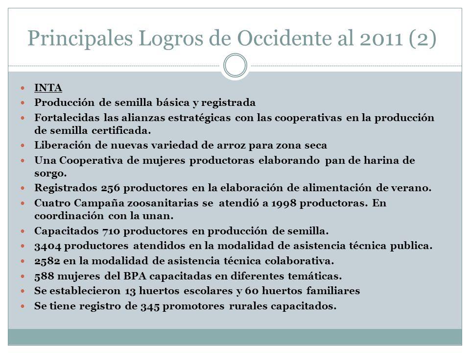 Principales Logros de Occidente al 2011 (2) INTA Producción de semilla básica y registrada Fortalecidas las alianzas estratégicas con las cooperativas en la producción de semilla certificada.