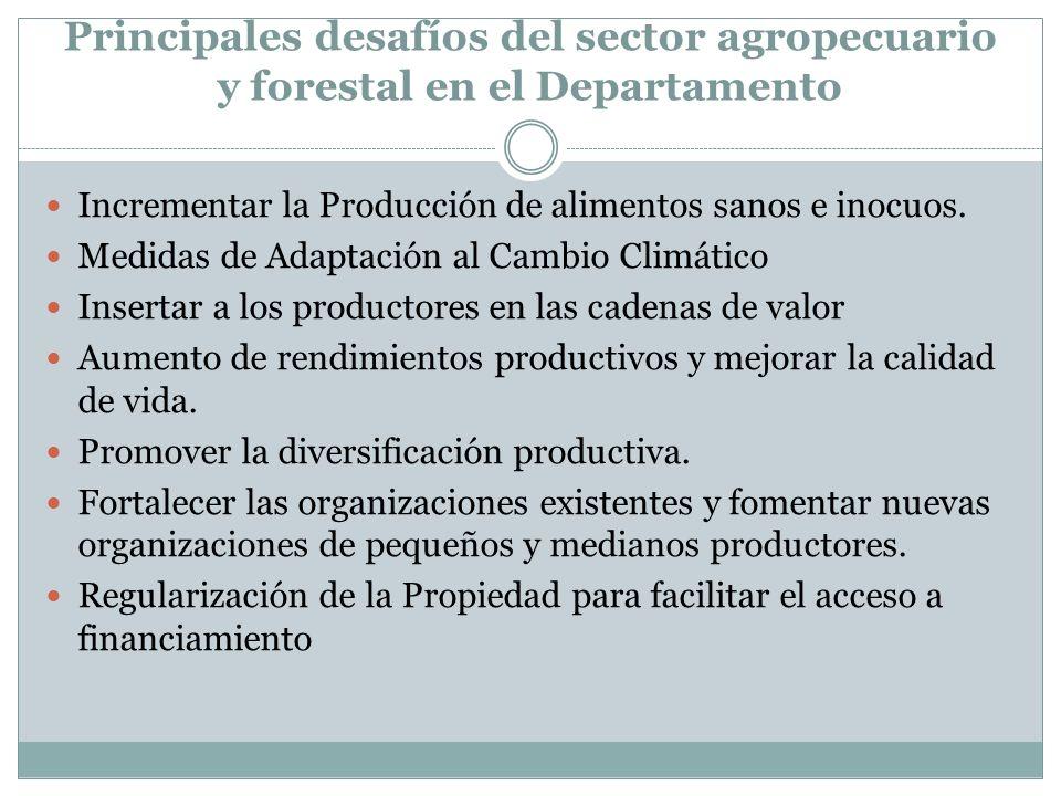 Principales desafíos del sector agropecuario y forestal en el Departamento Incrementar la Producción de alimentos sanos e inocuos. Medidas de Adaptaci