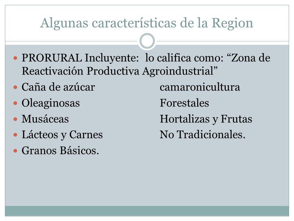 Algunas características de la Region PRORURAL Incluyente: lo califica como: Zona de Reactivación Productiva Agroindustrial Caña de azúcarcamaronicultura OleaginosasForestales Musáceas Hortalizas y Frutas Lácteos y CarnesNo Tradicionales.