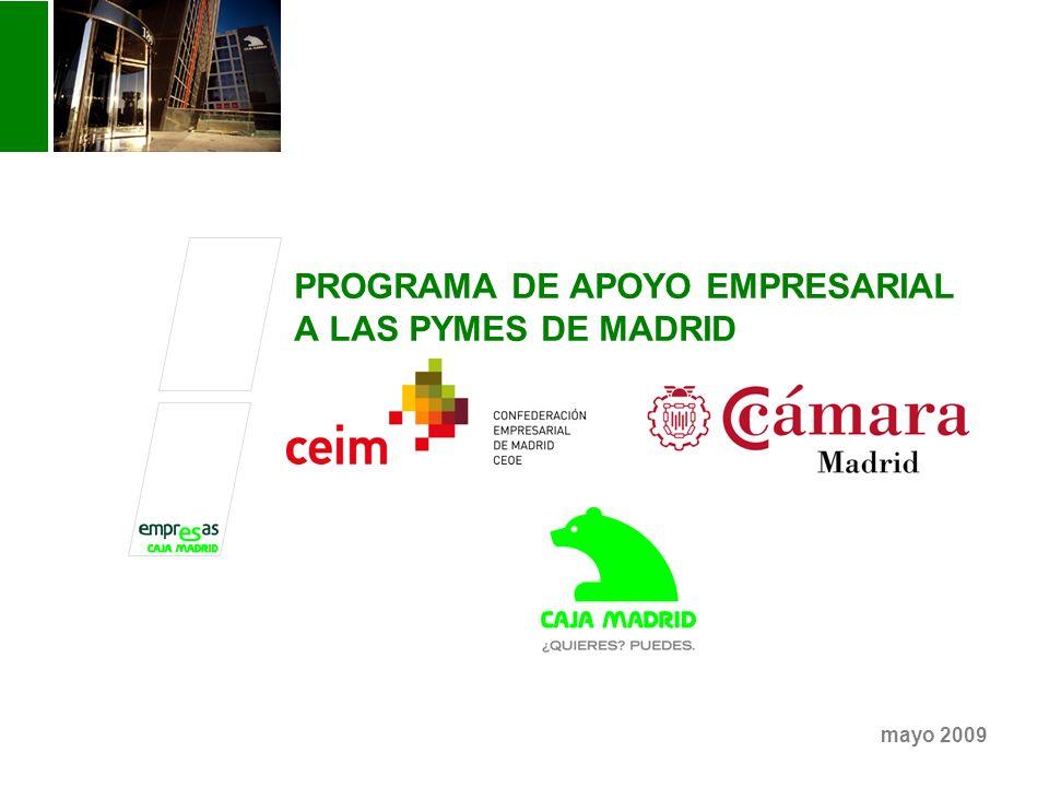 PROGRAMA DE APOYO EMPRESARIAL A LAS PYMES DE MADRID mayo 2009