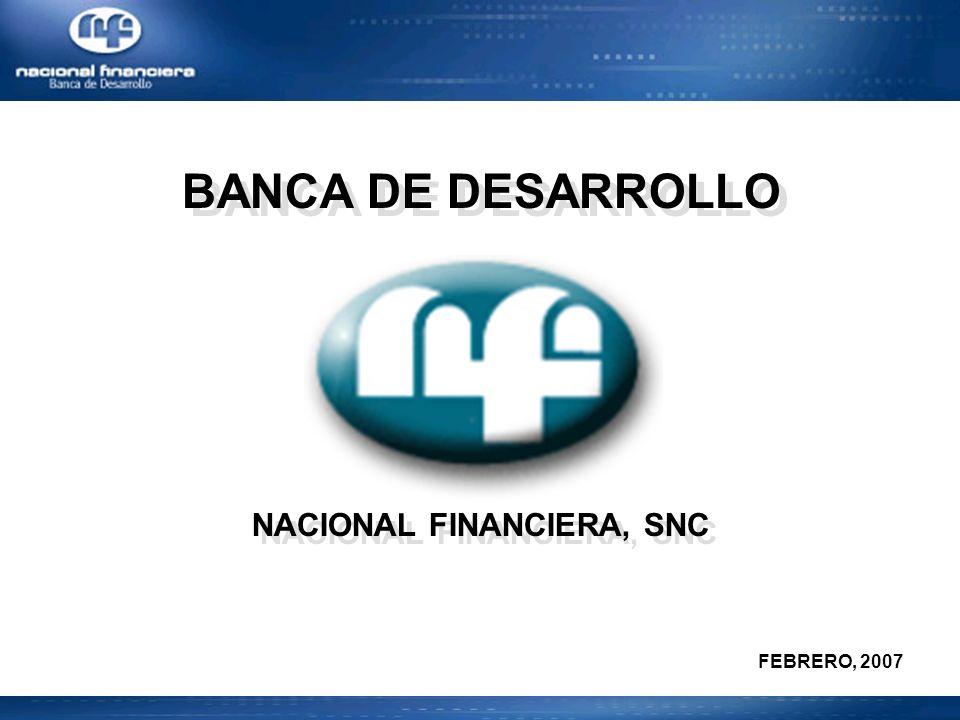BANCA DE DESARROLLO NACIONAL FINANCIERA, SNC BANCA DE DESARROLLO NACIONAL FINANCIERA, SNC FEBRERO, 2007