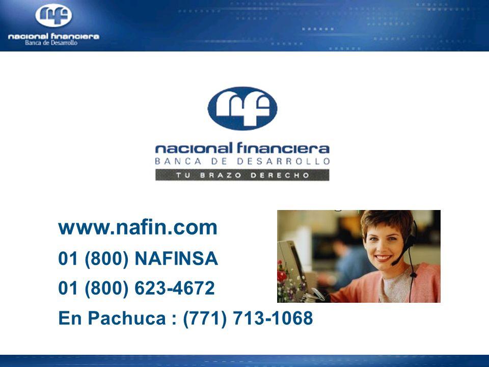 www.nafin.com 01 (800) NAFINSA 01 (800) 623-4672 En Pachuca : (771) 713-1068