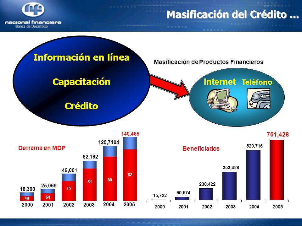 Masificación del Crédito... Información en línea Capacitación Crédito Internet Teléfono Masificación de Productos Financieros 2003 200120002002 49 % 6