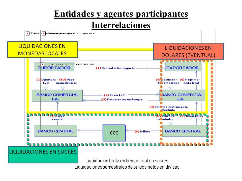Entidades y agentes participantes Interrelaciones Liquidación bruta en tiempo real en sucres Liquidaciones semestrales de saldos netos en divisas CCC