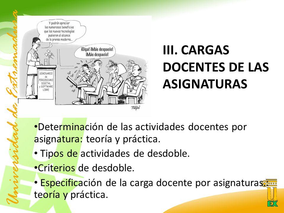 III. CARGAS DOCENTES DE LAS ASIGNATURAS Determinación de las actividades docentes por asignatura: teoría y práctica. Tipos de actividades de desdoble.