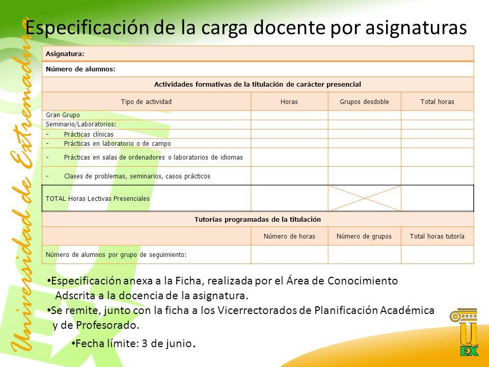 Especificación de la carga docente por asignaturas Especificación anexa a la Ficha, realizada por el Área de Conocimiento Adscrita a la docencia de la asignatura.